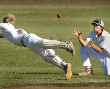 Tony Dodemaide on the proposed revamp of metropolitan turf cricket