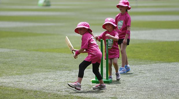 Festival of Female Cricket