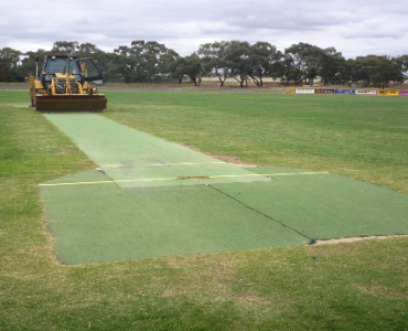 Horsham uses grant for new turf wicket