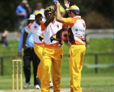 Stars shine in Premier Cricket