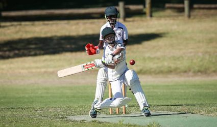 North East cricket hub to be built in Wodonga