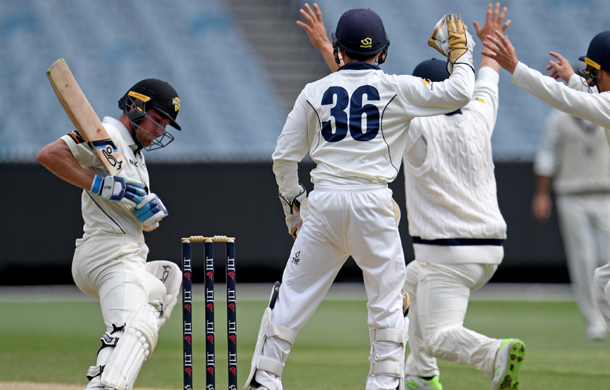 Livestream commentary to debut this Sheffield Shield season