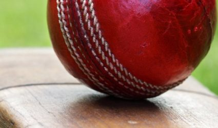 New Australian ball standard to create greater choice for community cricket