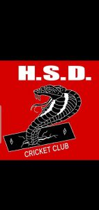 HSD Cricket Club